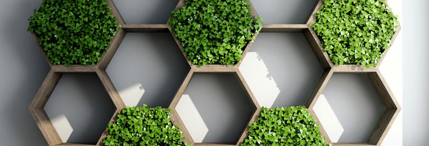 Avantages des cadres végétaux stabilisés